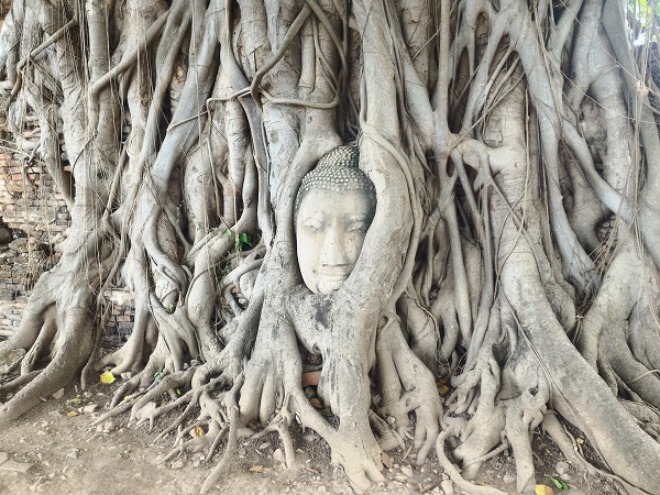 Bangkok-gezi-rehberi-gezmelerdeyim-ayutthaya