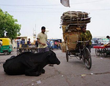 Hindistan Seyahati Öncesi Bilinmesi Gerekenler