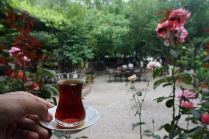 Fethiye Ölüdeniz, Kayaköy, Üzümlü ve Fethiye Merkez bölgesindeki lezzet durakları listede yer alıyor