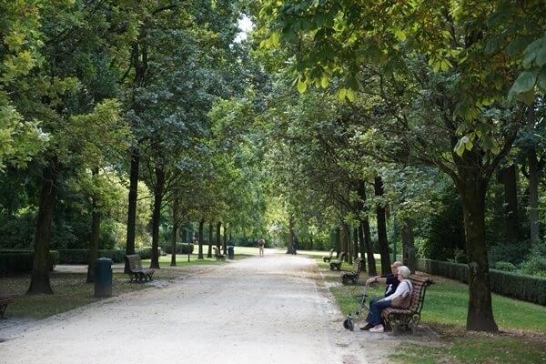 Cinquantenaire Parkı